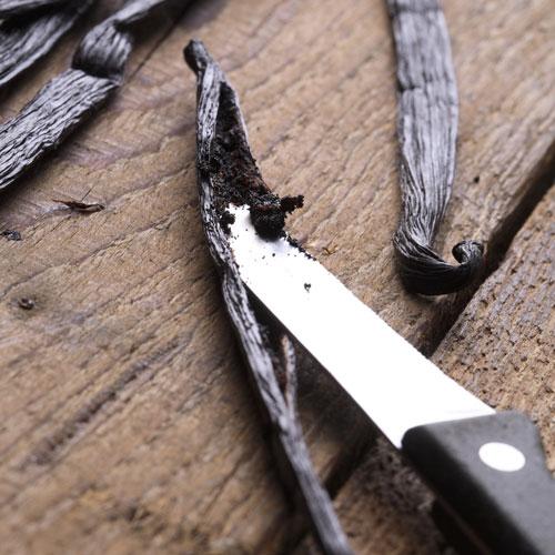 סכין חולץ גרגירי וניל מתוך מקל וניל